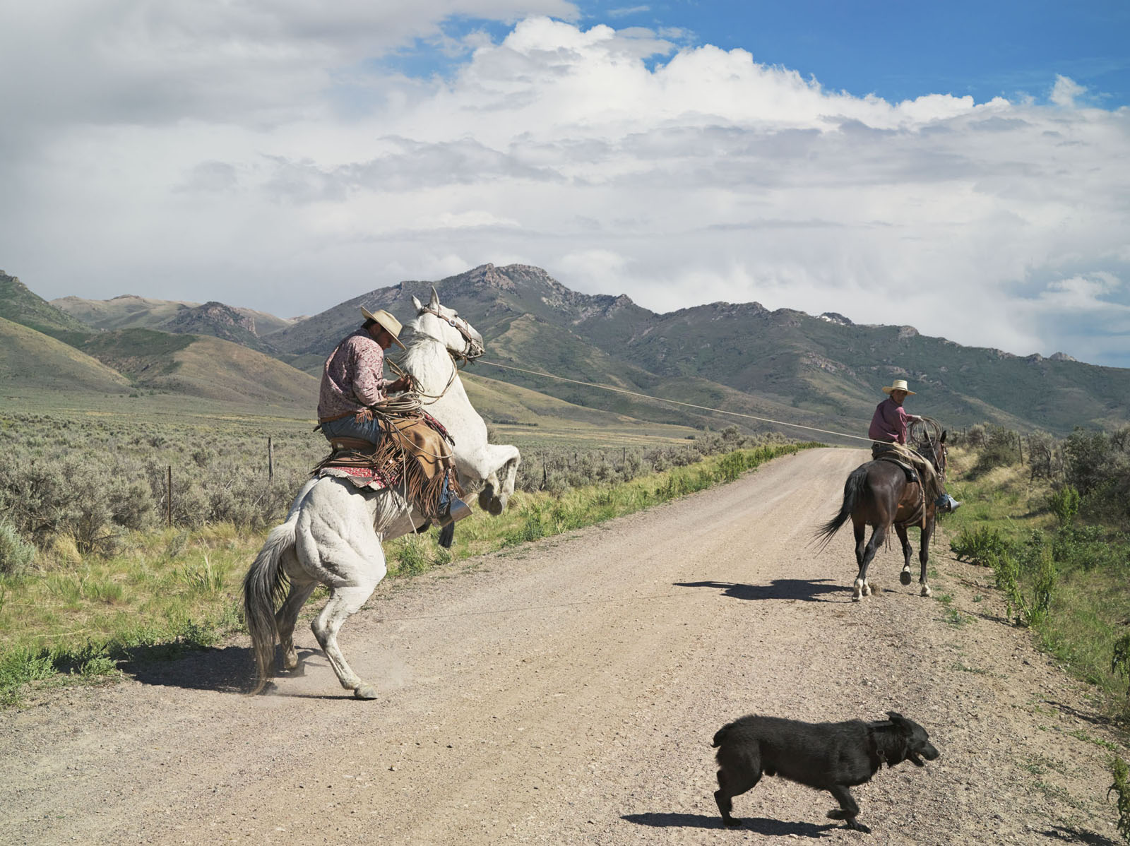 Casey and Rowdy Horse Training, 71 Ranch, Deeth, Nevada, Lucas Foglia, 2012