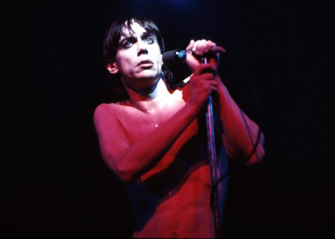 UNITED KINGDOM - MARCH 01:  Photo of Iggy POP; performing live onstage on 'The Idiot' tour - MusicBrainz: f37b3f31-b1f8-4b88-8cb5-b34f709b17d7,  (Photo by Ian Dickson/Redferns)