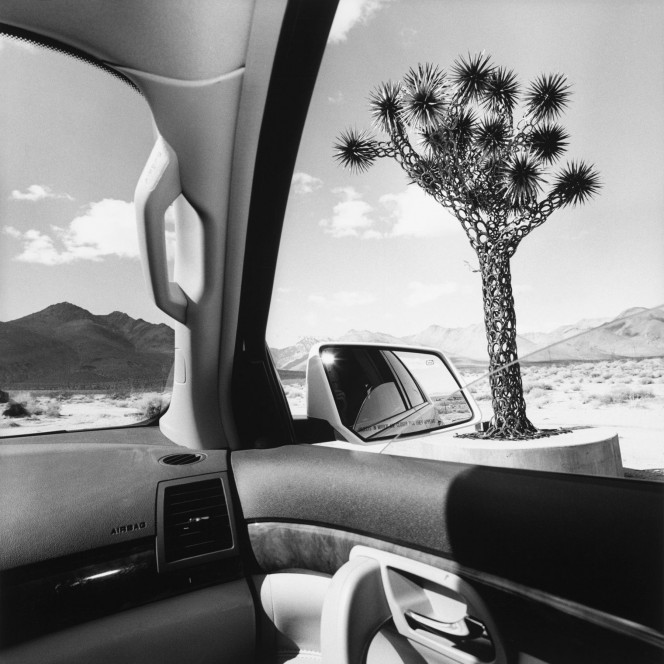 Lee Friedlander, California, 2008 Photography by © Lee Friedlander, courtesy Fraenkel Gallery, San Francisco