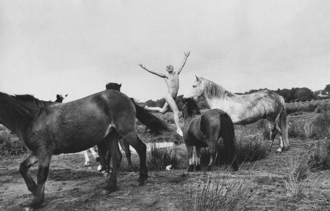 Oleg Kulik, Horses of Bretagne, 1998