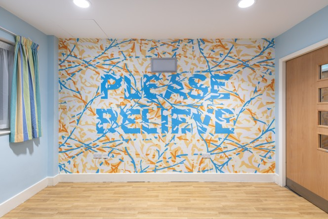 Mark Titchner Please Believe TV Room Bluebell Lodge Hospital Rooms