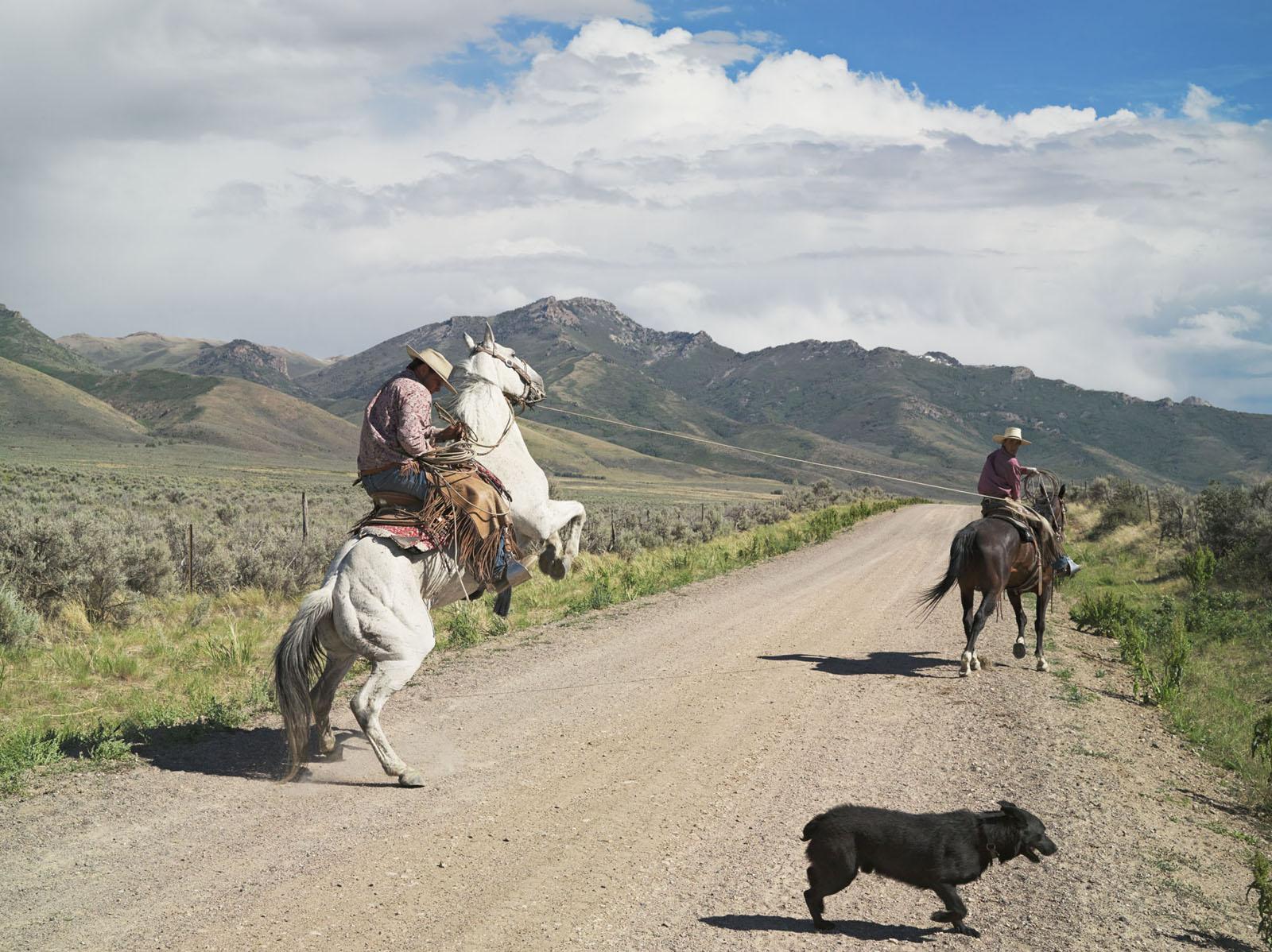 Casey and Rowdy Horse Training, 71 Ranch, Deeth, Nevada, Lucas Foglia, 2012