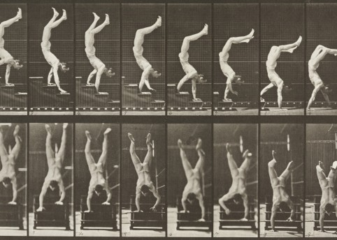 Naked man walking down a set of stairs on his hands, 1887, from Animal Locomotion by Eadweard Muybridge (1830-1904) © Victoria and Albert Museum, London