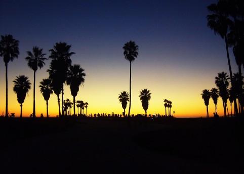 Robert-Lang_Venice-beach_31-back-cover