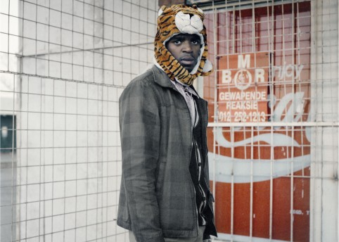 Second Transition, Tiger, 2012; Courtesy of the artist and Goodman Gallery